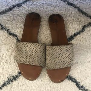 MADEWELL Animal Slides Size 8.5